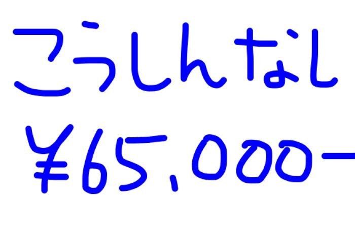 2017.06.ブログ更新しないでアドセンス65,000円稼げた。継続だねー。